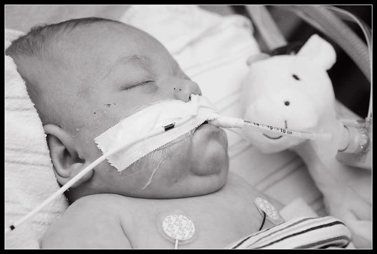 Meet Baby Pierce